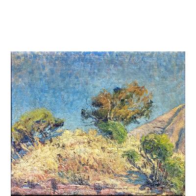 alberto-valenzuela-llanos-paisaje-de-campo-1